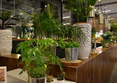 19 - VNG - Belastingconferentie - 2017 - 2-nice - Binnentuin - Groen - Urban Jungle - Outdoor - Event - Evenement - Eventstyling